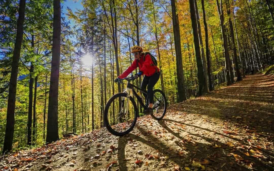 doğada bisiklet kullanan adam