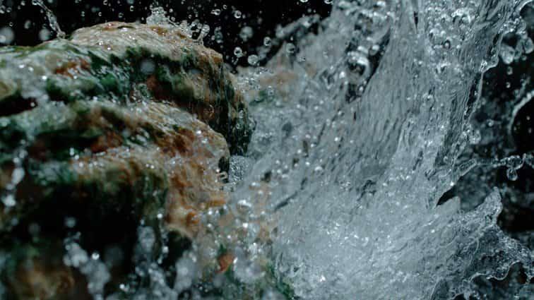 Çam Hotel Yüksek Mineral Su Değerleri ile Çok Daha Fazlasını Vadediyor