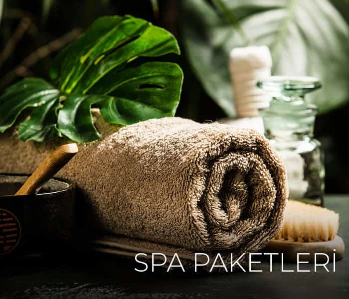 Element SPA Paketleri