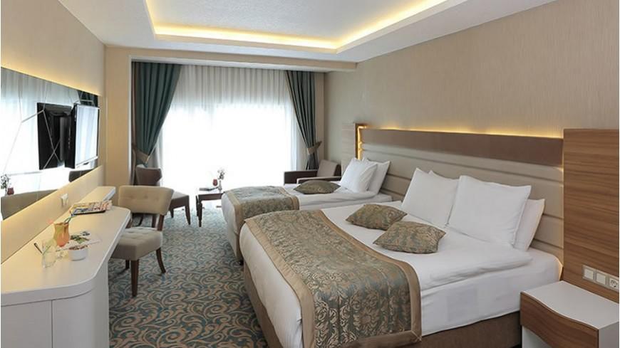 Standart Oda Çam Hotel