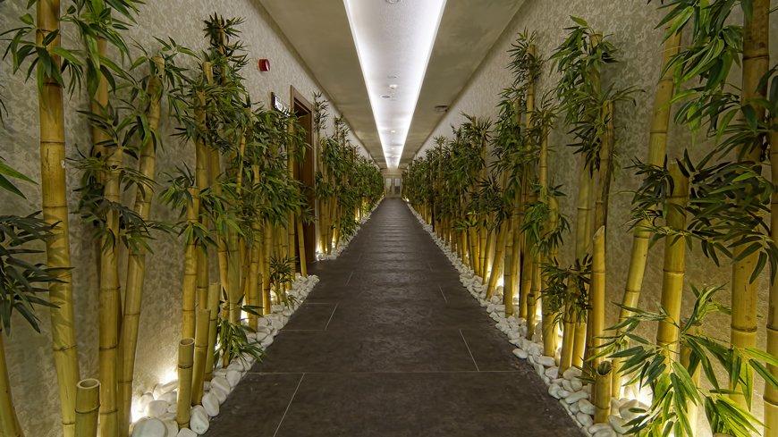 spa-koridor