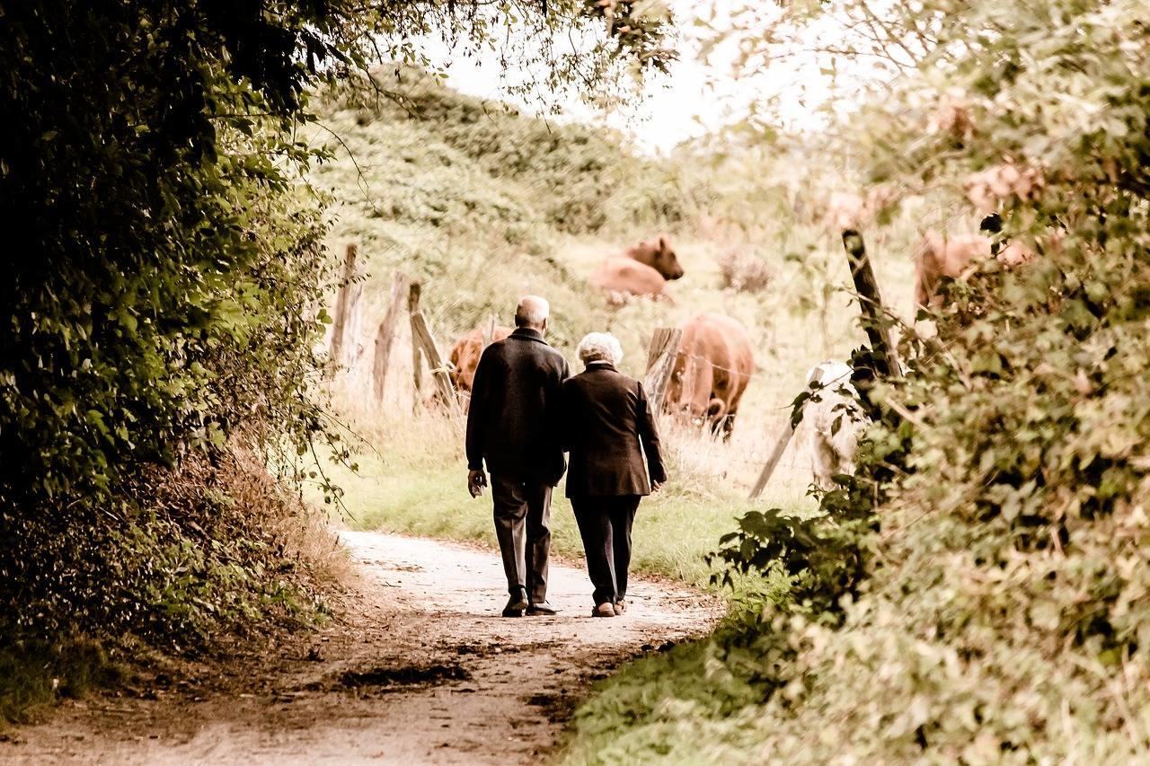 yürüyüşün faydaları, ormanda yürüyüş yapan yaşlı çift