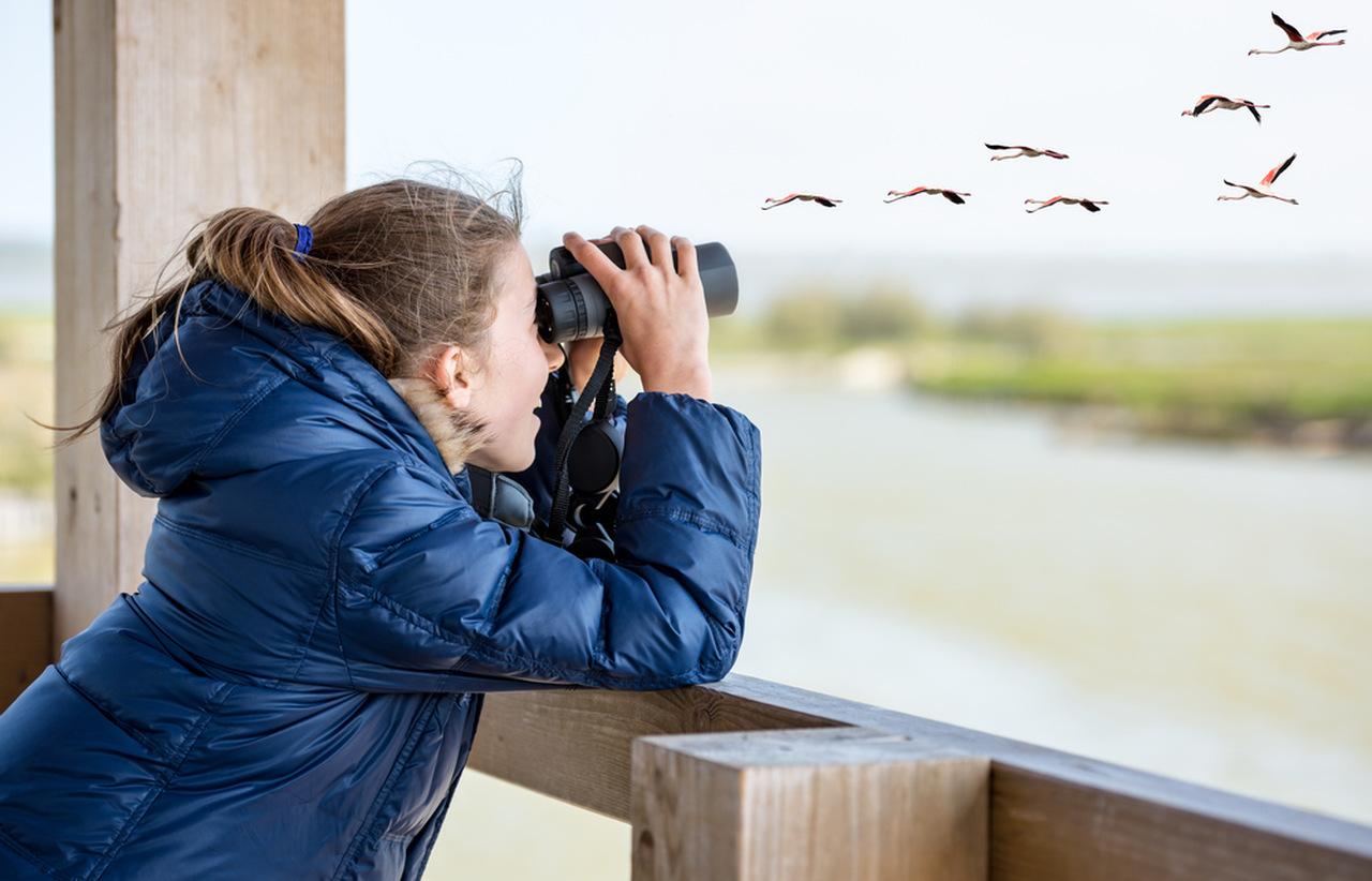 kuş gözlemciliği yapan bayan