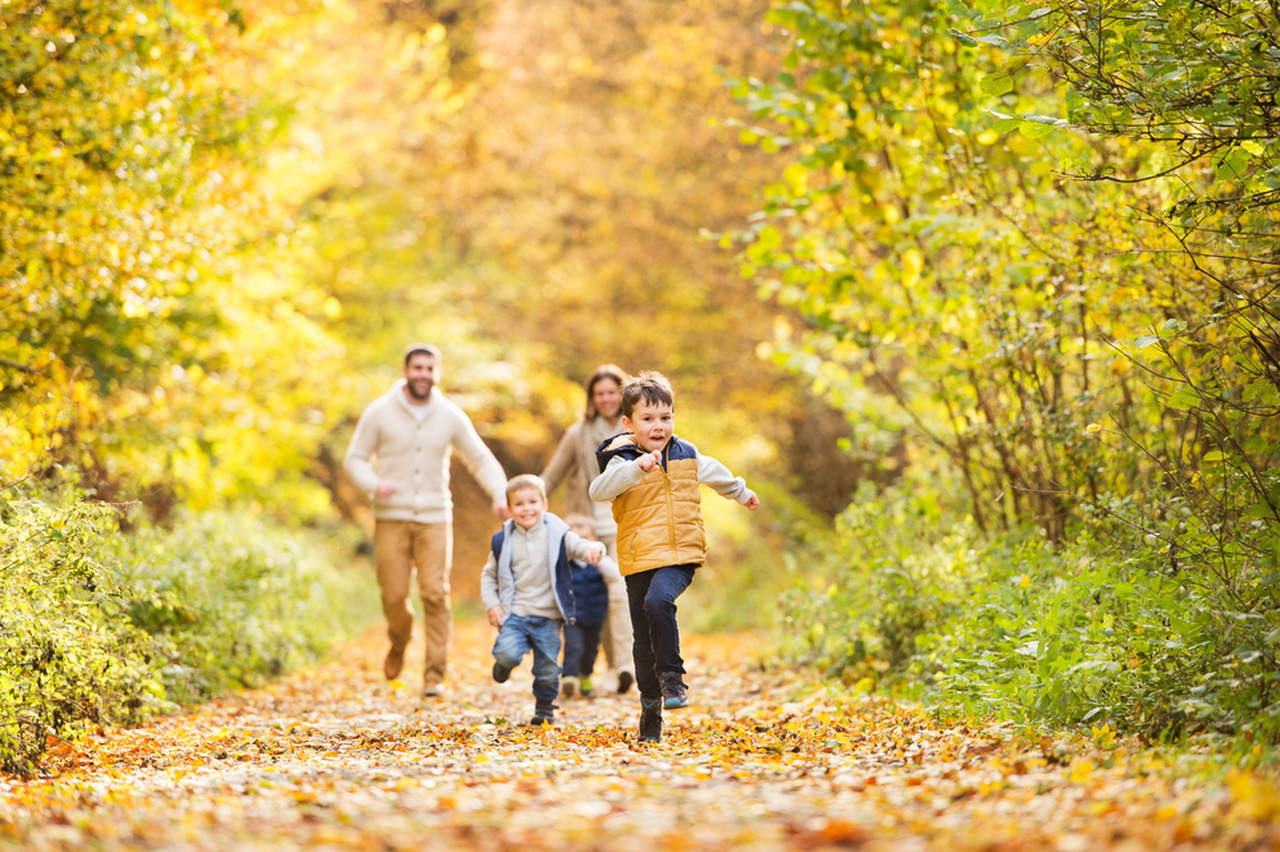 ailecek ormanda koşu yapan aile