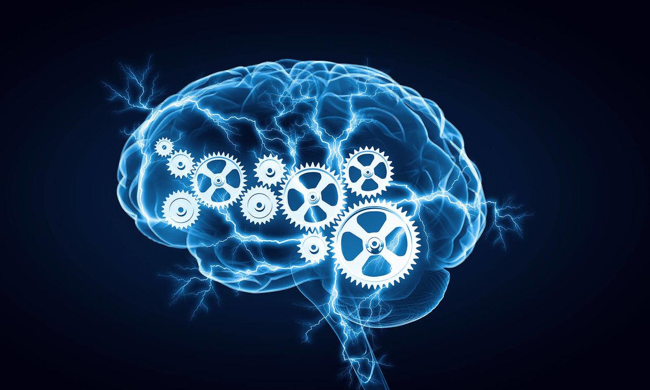 beyin, beyin egzersizleri